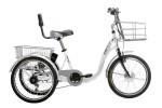Tricycle électrique E132